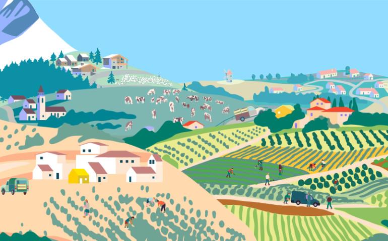 banner-landscape2