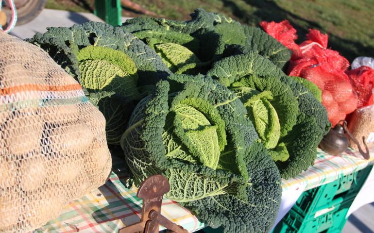 mercato-contadino-svo-11-sempione-news