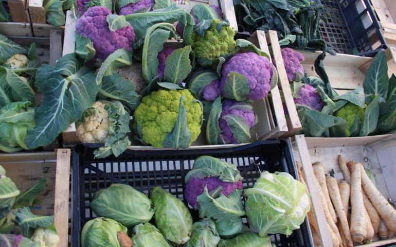 mercato-contadino-svo-23-sempione-news