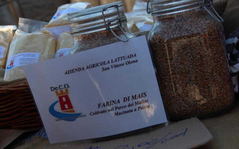 mercato-contadino-svo-34-sempione-news